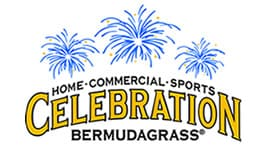 Celebration Bermudagrass - King Ranch
