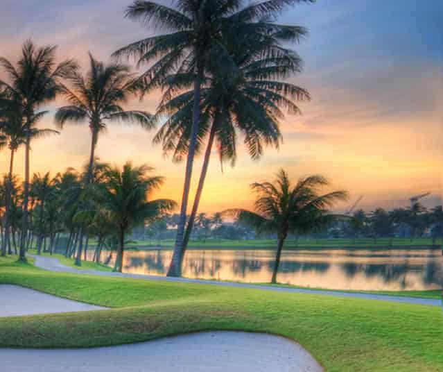 King Ranch Florida Golf Turfgrass